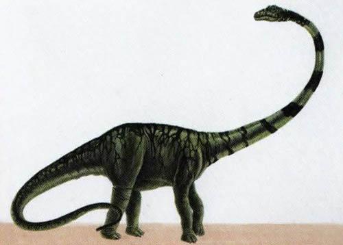 Барозавр