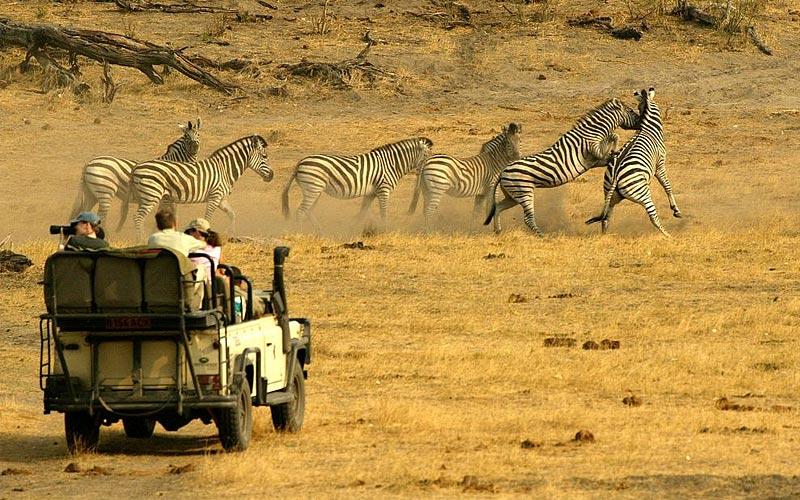 Туризм в Ботсване